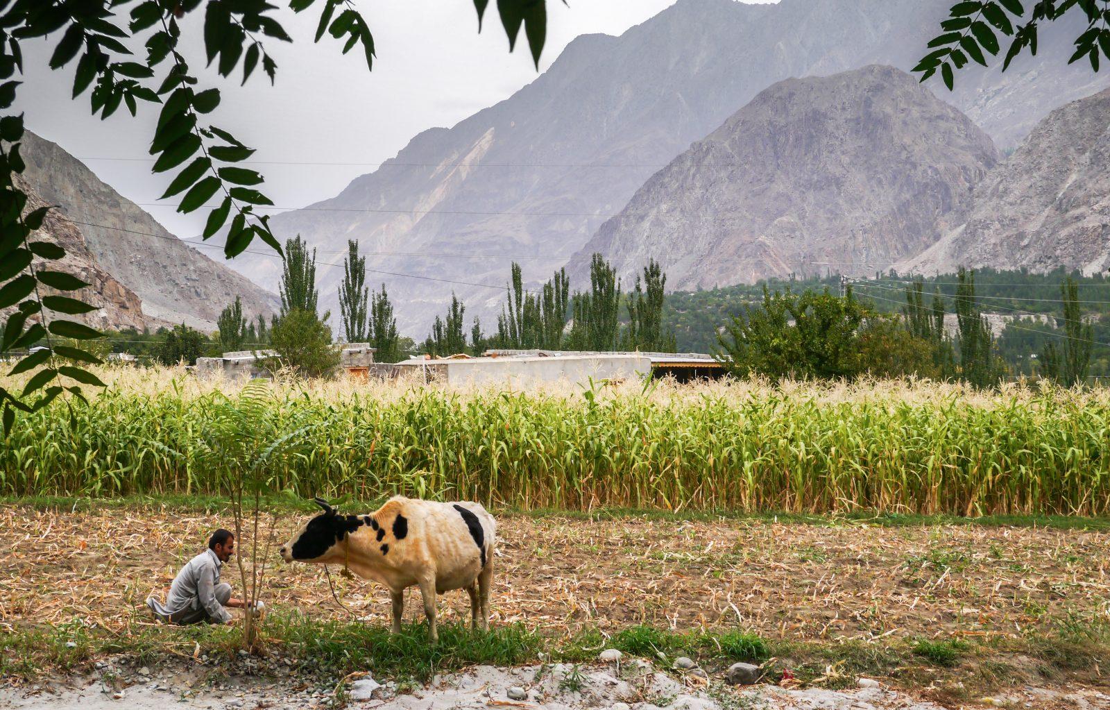 Karimbad Pakistan